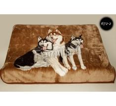 Blanket Elway 160x210 - 672-2